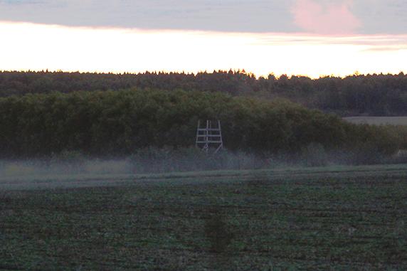 Ett jakttorn i dimma